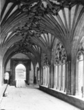 Canterbury Cathedral;Cloister