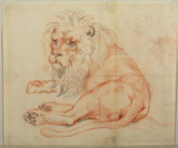 Lion resting (recto)