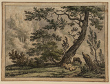 Wooded landscape with sheep