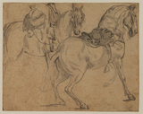 Study of two horses with saddles