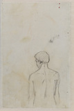 Study of the head and torso of a man, viewed from the rear (verso)
