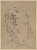 Head of a woman, looking up (recto)