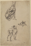 Three studies of a greyhound
