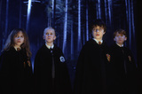 Harry, Ron, Hermione & Malfoy in Forbidden Forest