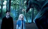 Harry & Luna with Thestral