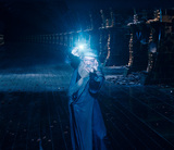 Dumbledore fighting