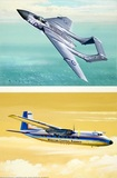 Hawker Siddeley Sea Vixen & Handley Page Herald