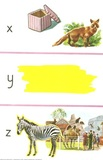 Box, fox, yellow, zebra, zoo