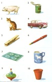 Pig, tin, cat, car, peg, pen, rug, mug, top, pot