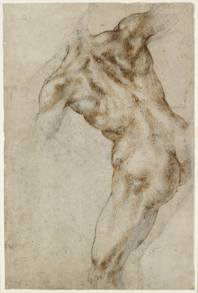 Recto: Nude male Torso (?study for the Battle of Cascina)