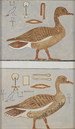Copy of wall painting from a private tomb of Kaemankh, (III, 1, 132), Giza, geese