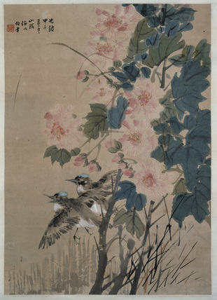 Hibiscus and flying kingfishers
