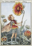 The Gaillardia Fairy