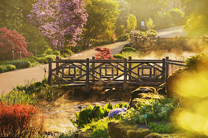 Bridge over the Long Ponds in spring at RHS Garden Wisley.