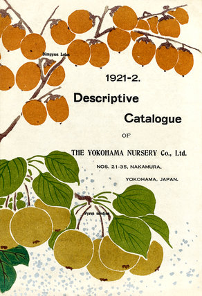 Yokohama Nursery Catalogue