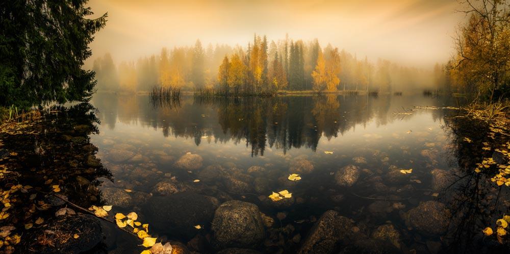 Metsälampi. Kuva: Lauri Lohi