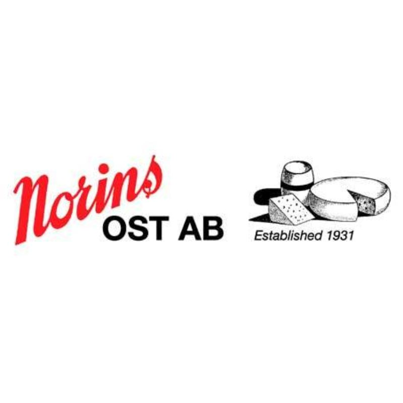 Norins Logo Photoshop