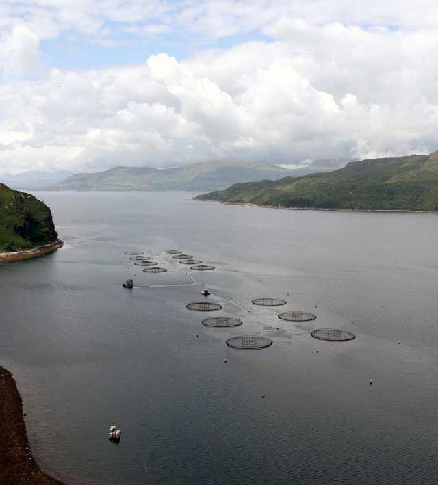 Loch Hourn salmon farm with Isle of Skye in the background