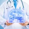 Neuro  El diagnóstico de las enfermedades del sistema nervioso - Radiología