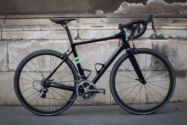 Parlee Altum in blue and green