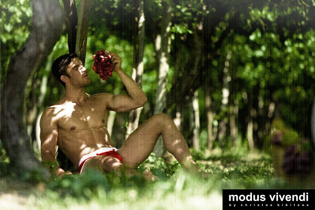 modus vivendi underwear campaign retro greece wingrower style