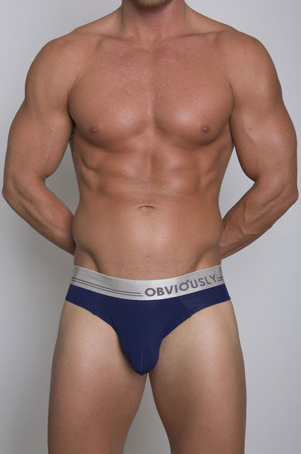 Obviously metalic line briefs