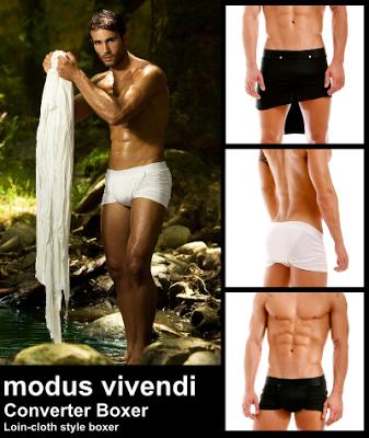 Modus Vivendi converter boxer