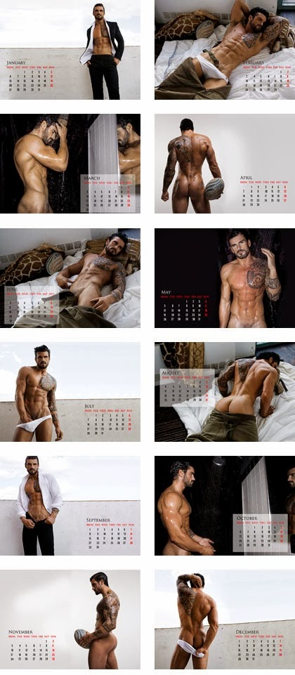 Rubgy player Stuart Reardon hot naked calendar 2014