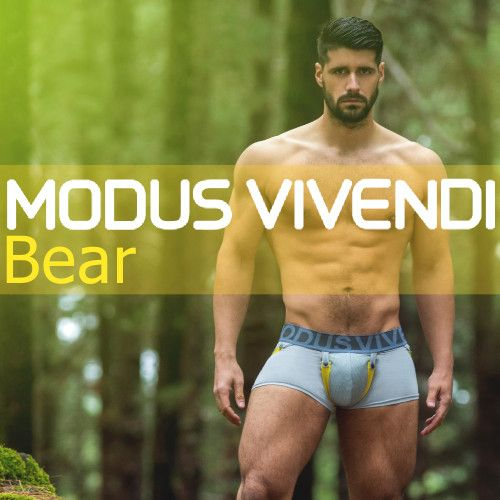 Modus Vivendi Bear Line at Vocla