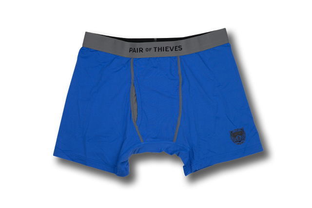 Pair of Thieves underwear