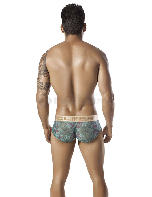 Clever - Flowery Touch Cheeky Brief