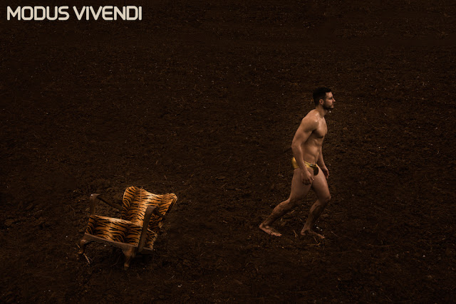 New Earth Line by Modus Vivendi