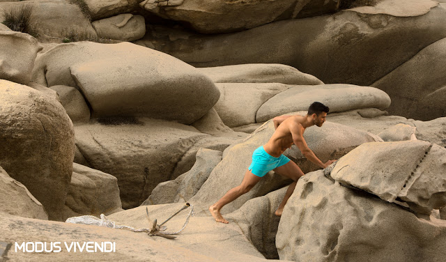New Neon swimwear by Modus Vivendi