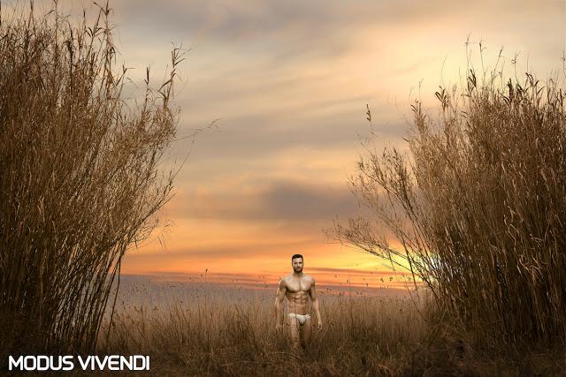 Flamme Line by Modus Vivendi
