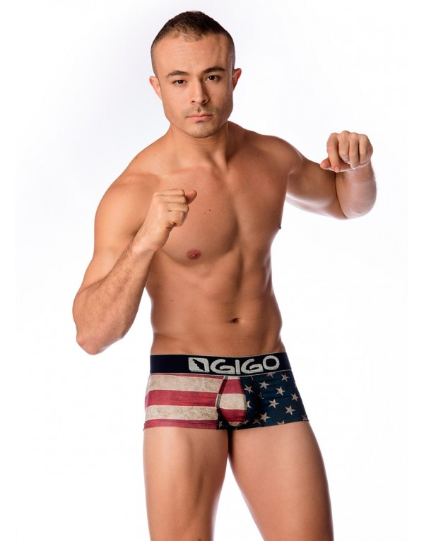 g02003-boxer-short-usa