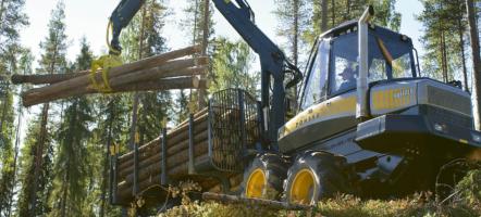 Sellun ja paperin valmistukseen sopivaa kuitupuuta syntyy metsien harvennushakkuissa
