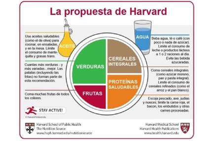 Plato nutricional de los estudiantes de Harvard