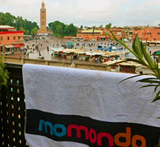 image of momondo towel