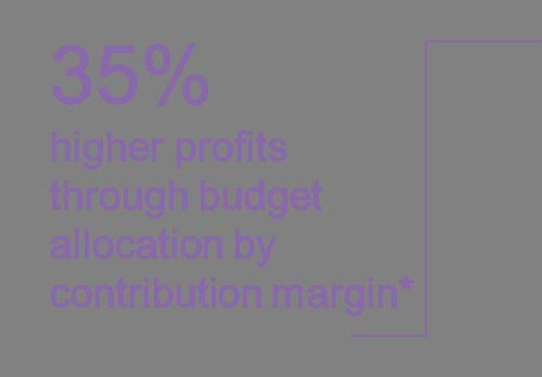 eCommerce higher profits through budgetoptimization