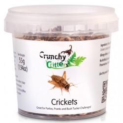 Crickets - 55g