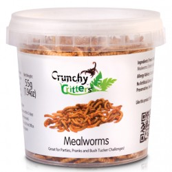 Mealworms - 55g
