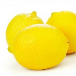 Lemons - 3 Pack