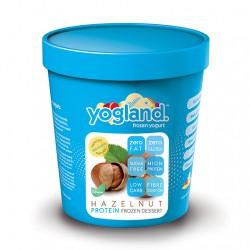 Yogland Hazelnut Froyo - 2 Pack