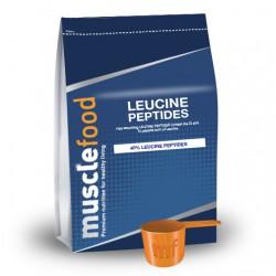 Leucine Peptides