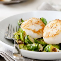 Fresh Atlantic Scallops - 250g