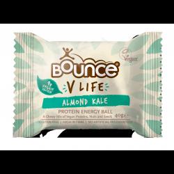 Bounce Vegan 9g Protein Balls