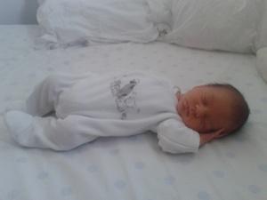 Leo-2012-33-02-img