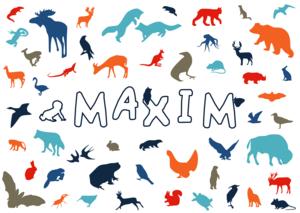 Maxanimbb2