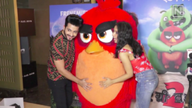 TV Celebs Attend the Special Screening of The Angry Birds Movie 2
