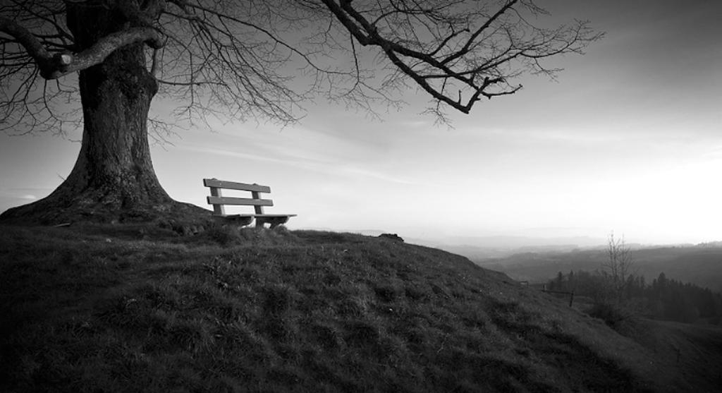 wat-bleef-over-sociale-contacten-eenzaamheid